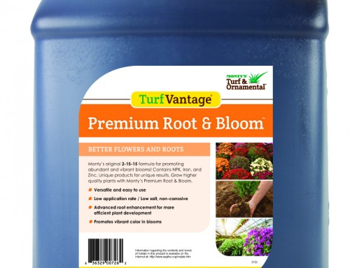 Premium Root & Bloom